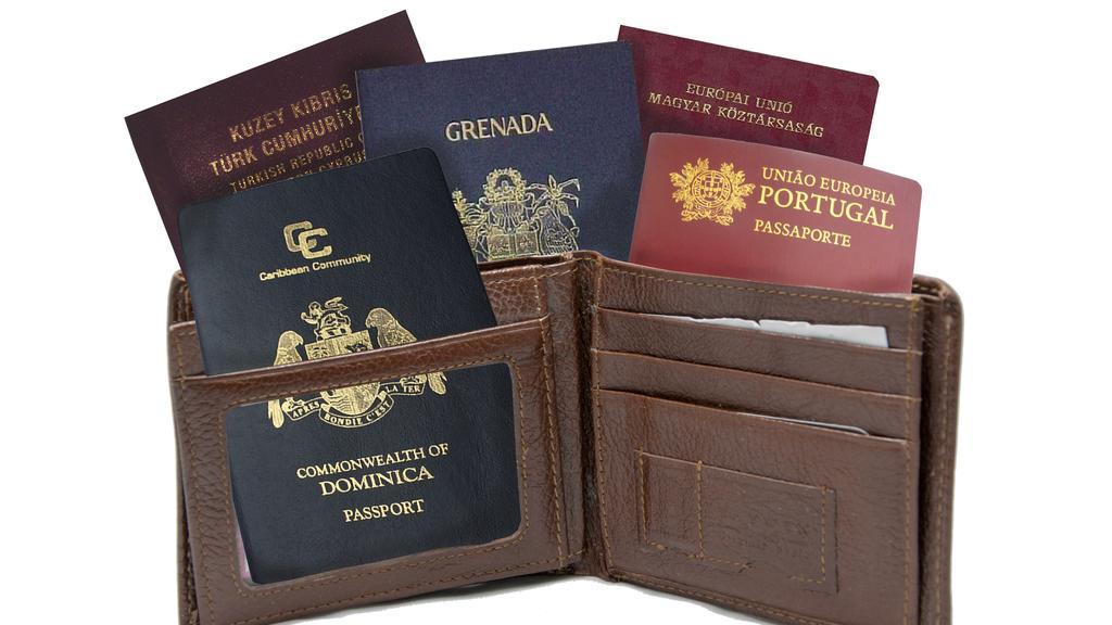 לכמה ישראלים יש דרכון זר